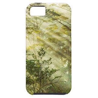 Queulat Park, Patagonia-Waldlandschaft, Aysen, Hülle Fürs iPhone 5
