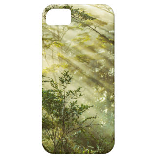 Queulat Park, Patagonia-Waldlandschaft, Aysen, iPhone 5 Schutzhülle