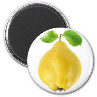Quittenfrucht Runder Magnet 5,7 Cm