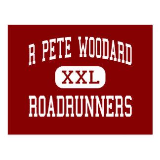 R Peter Woodard - Roadrunners - Jüngeres - Yuma Postkarte
