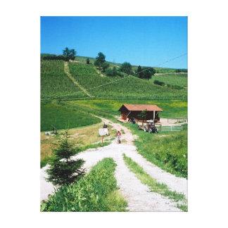 Rabatt! Piemont Weinkeller Gespannter Galerie Druck