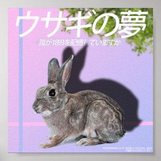 Rabbitwave 2,0 Plakat