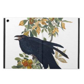 Raben-Vogel
