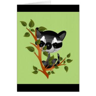Racoon in einem Baum Karte