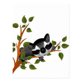 Racoon in einem Baum Postkarte