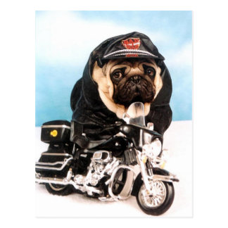 Radfahrer-Mops-Hund Postkarte
