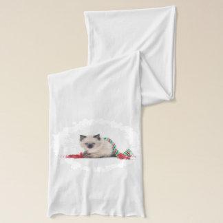 Ragdoll Kätzchen-Schal Schal