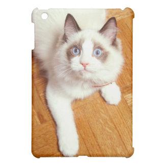 Ragdoll Katze auf Boden, erhöhte Ansicht iPad Mini Hülle