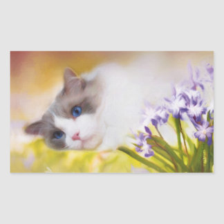 Ragdoll Katzen-Aufkleber Rechteckiger Aufkleber