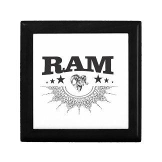 RAM des schwarzen Sternes Erinnerungskiste