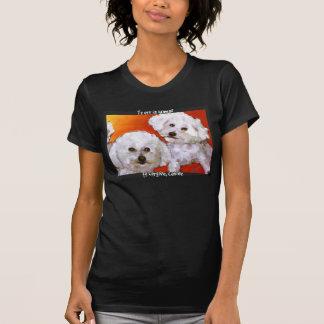 Randolphs Jaspis u. Cosmo T-Shirt