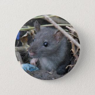 Ratte in einem Loch Knopf Runder Button 5,7 Cm