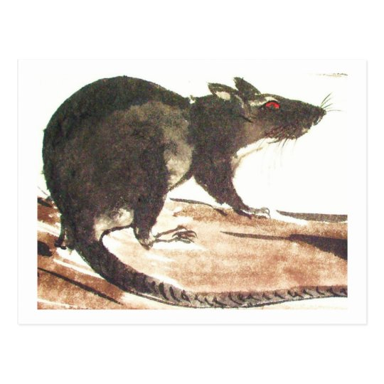 Ratte No. 01 * Rat * Ratten-Postkarten* Rat-Art-Po Postkarte