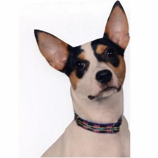 Ratte Terrier Freistehende Fotoskulptur