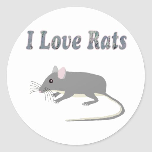 Ratten Sticker