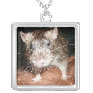 Ratten-Liebe Versilberte Kette