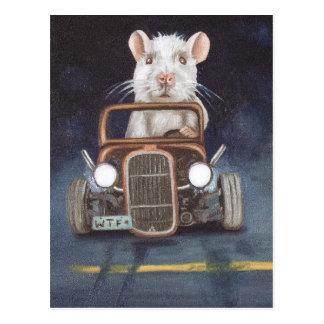 Ratten-Rennen Postkarte