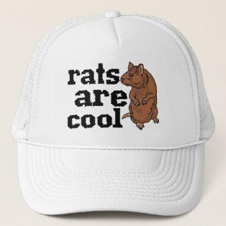Ratten sind cool truckerkappe