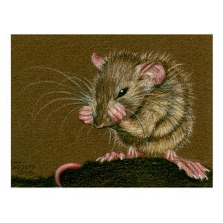 Ratten-wütende Tatzen Up Postkarte