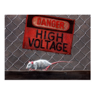 Rattenhochspannungszeichen auf Zaun Postkarte