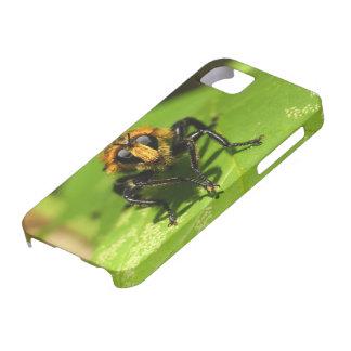 Räuber-Fliege Etui Fürs iPhone 5