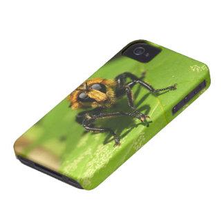 Räuber-Fliege iPhone 4 Case-Mate Hülle