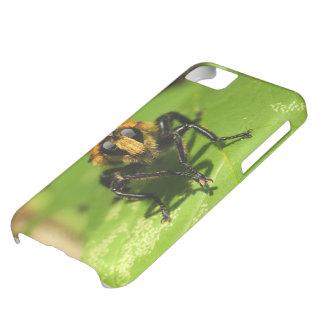 Räuber-Fliege iPhone 5C Hülle