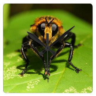 Räuber-Fliege Quadratische Wanduhr