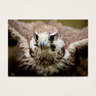 Raubvogel Fliegen Visitenkarte