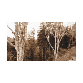 Rauchige Gebirgstennessee-Bäume Leinwanddruck