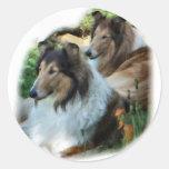 Raue Collie-Kunst-Geschenke Runde Sticker