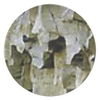 raue weiße Felsendecke Teller