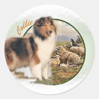 Rauer Collie-Wächter der Schafe Runder Aufkleber