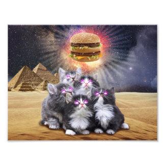 Raumkatzen, die nach dem Burger suchen Fotografischer Druck