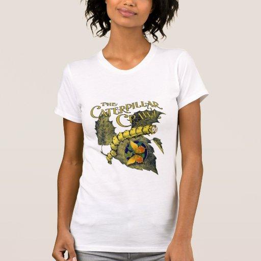 Raupen-u. Schmetterlings-T - Shirt