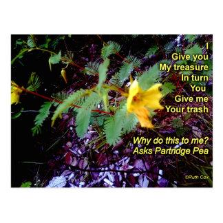 Rebhuhn-Erbsen-Wildblume-Abfall Postkarte