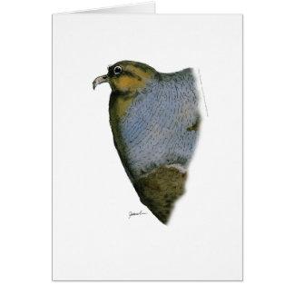 Rebhuhnvogel, tony fernandes karte