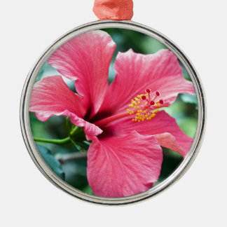 RED HIBISCUS FLOWER RUNDES SILBERFARBENES ORNAMENT