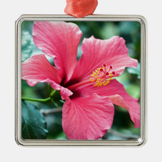 RED HIBISCUS FLOWER SILBERNES ORNAMENT
