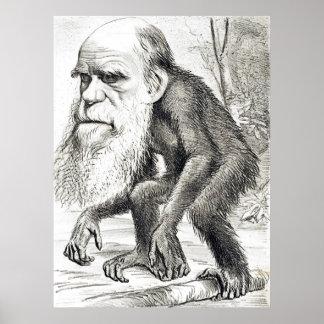 Redaktioneller Cartoon von Charles Darwin 1871 Poster