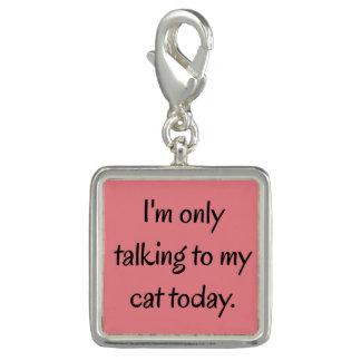 Rede mit meiner Katze Charm