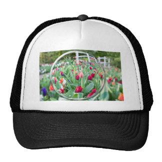 Reflektierende Tulpe-Blumen des Glasbereichs Mützen