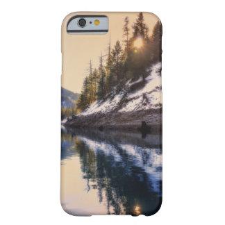 Reflexionen eines Traumtelefonkastens Barely There iPhone 6 Hülle