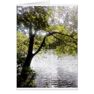 Reflexionen im Holz Karte