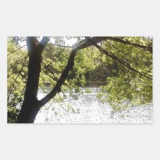 Reflexionen im Holz Rechteckiger Aufkleber