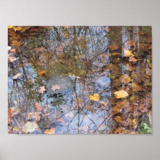 Reflexionen in den Wasser-Plakat-Drucken