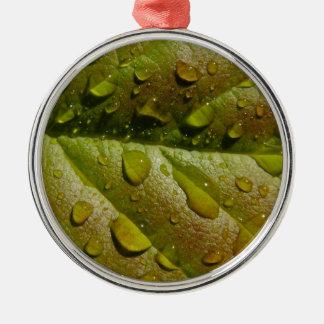 Regen auf einem Magnolien-Blatt Silbernes Ornament
