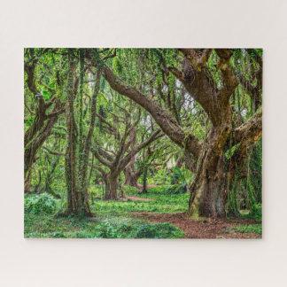 Regen-Bäume des Waldes Puzzle