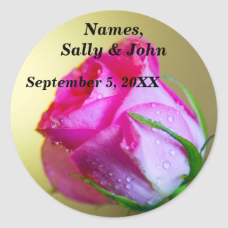 Regen-Tropfen-Küsse der Natur auf rosa Rose Runde Sticker