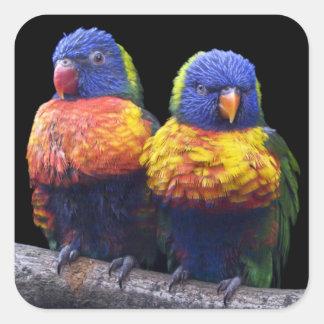 Regenbogen-Aufkleber Quadratischer Aufkleber